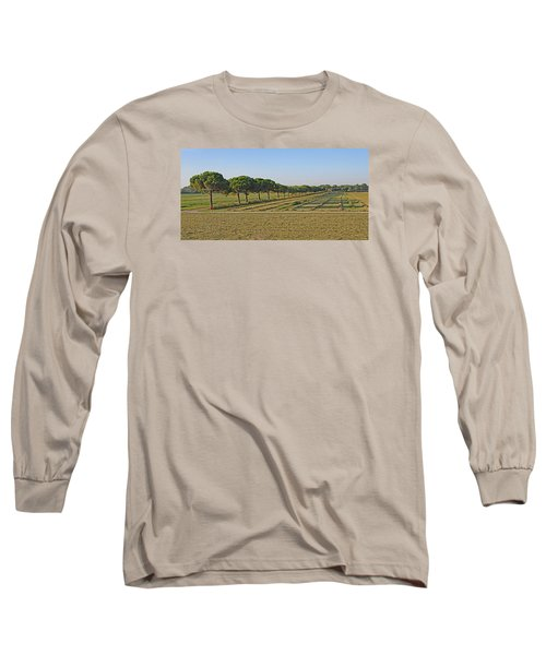 The Source Of Pine Nuts  Long Sleeve T-Shirt by Allan Levin