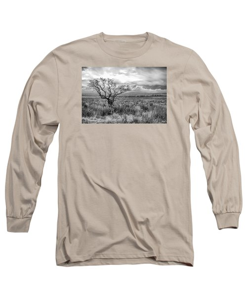 The Windswept Tree Long Sleeve T-Shirt