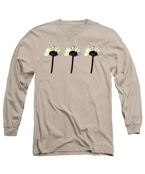 Three Little Daisies Long Sleeve T-Shirt