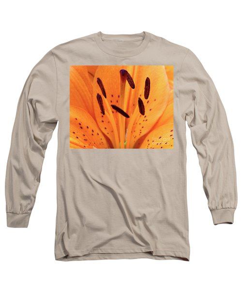 Tiger Macro Long Sleeve T-Shirt