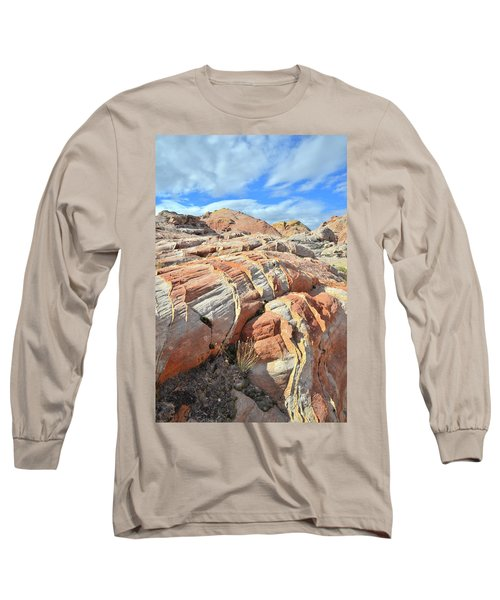 Tiger Stripes In Valley Of Fire Long Sleeve T-Shirt by Ray Mathis