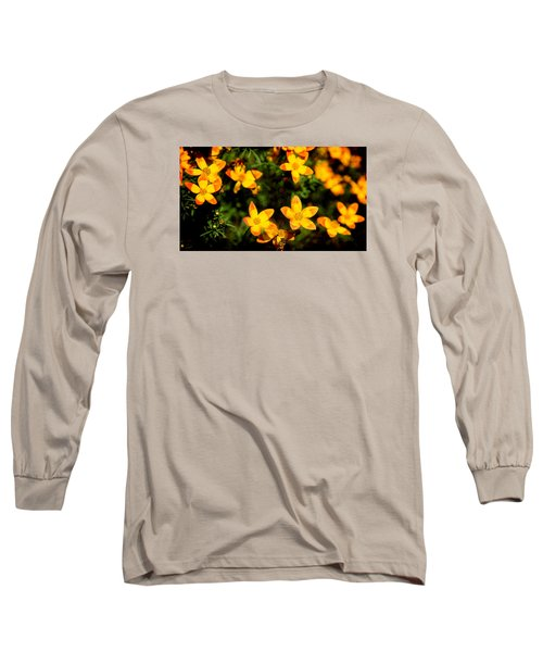 Tiny Suns Long Sleeve T-Shirt