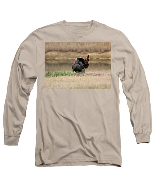 Tom Turkey At Pond Long Sleeve T-Shirt by Sheila Brown