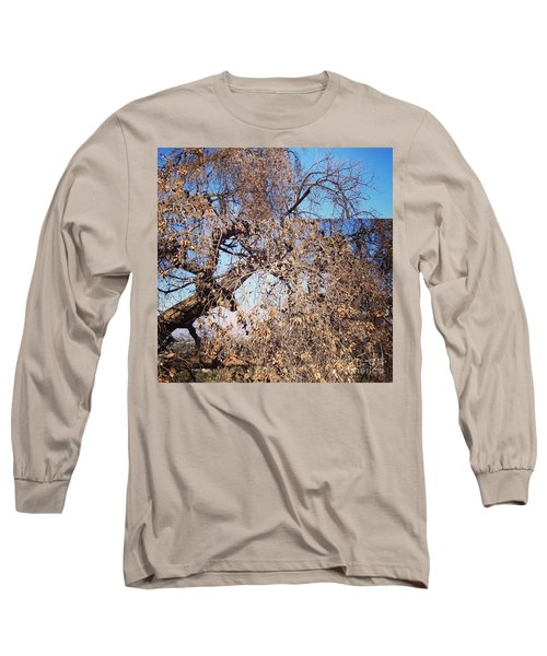 Long Sleeve T-Shirt featuring the photograph Tree Bow And Dance by Nora Boghossian