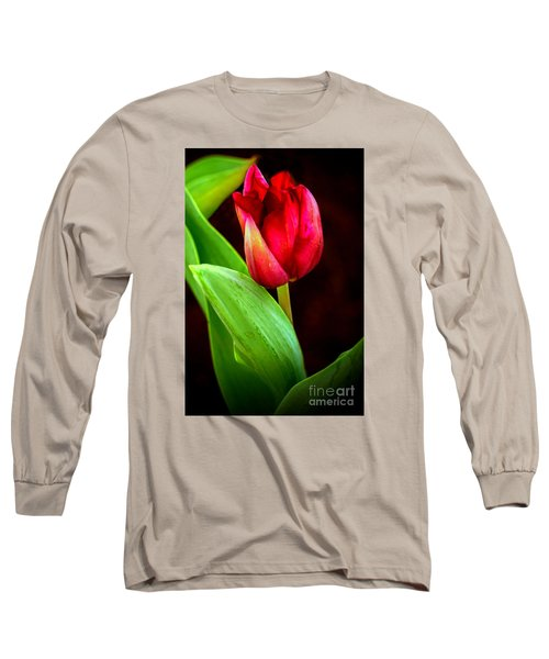 Tulip Caught In The Light Long Sleeve T-Shirt