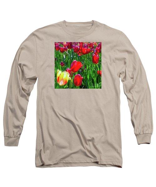 Tulip Garden In Bloom Long Sleeve T-Shirt