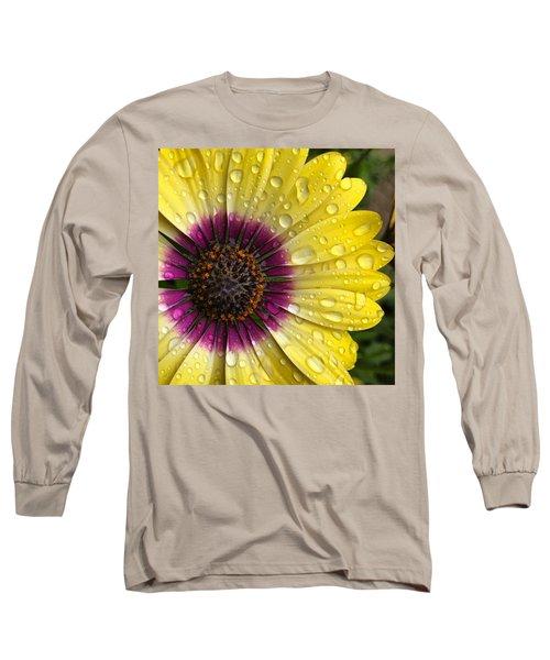 Daisy Up Close  Long Sleeve T-Shirt