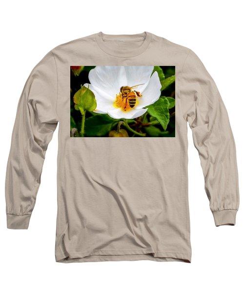 Vacaville Honey Bee Long Sleeve T-Shirt