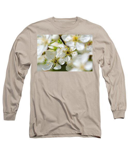 Vermont Apple Blossoms Long Sleeve T-Shirt