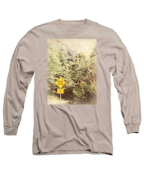 Vermont In Winter Long Sleeve T-Shirt by Robin Regan
