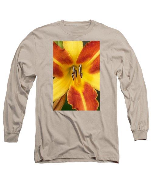 Vibrant Lilly Long Sleeve T-Shirt by Tiffany Erdman