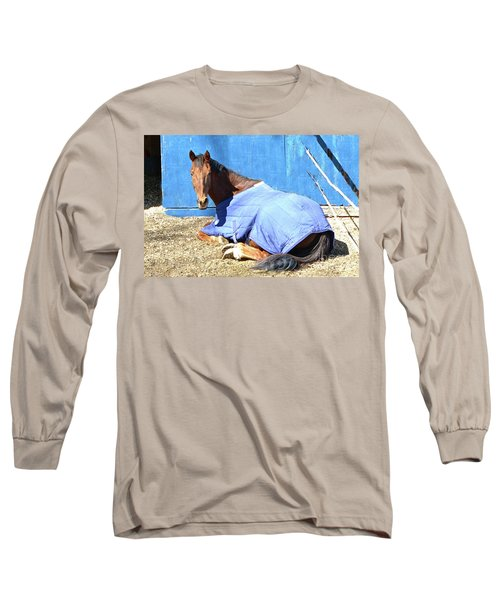 Warm Winter Day At The Horse Barn Long Sleeve T-Shirt