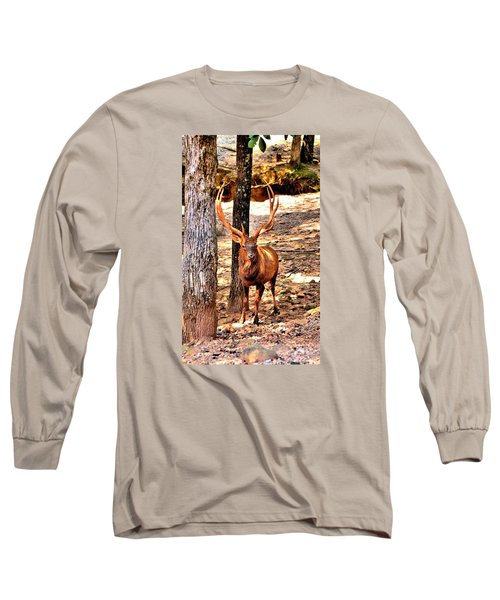 Watchfull Stag Long Sleeve T-Shirt by James Potts