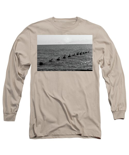 Water Birds Long Sleeve T-Shirt