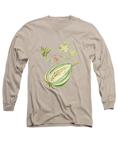 Watermelon With Leaves And Butterfly By Cornelis Markee 1763 Long Sleeve T-Shirt