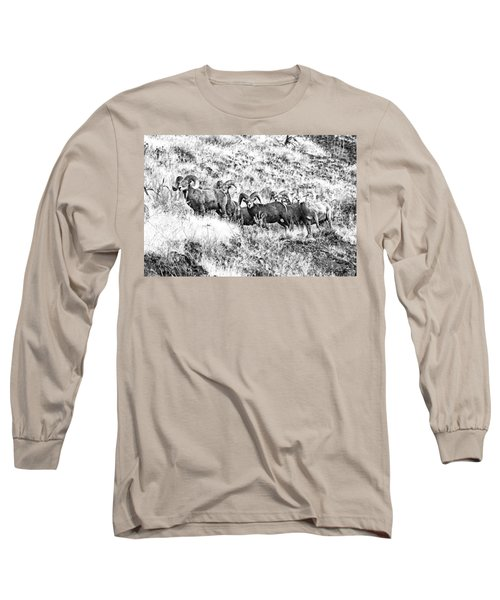 We Have A Visitor Long Sleeve T-Shirt by Steve Warnstaff