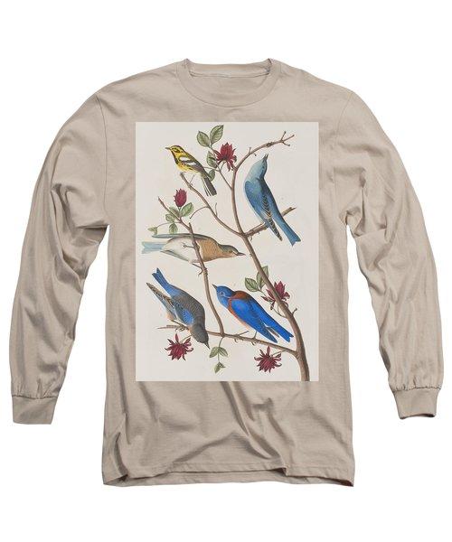 Western Blue-bird Long Sleeve T-Shirt