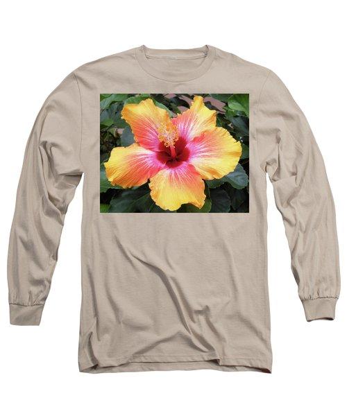 What A Beauty Long Sleeve T-Shirt