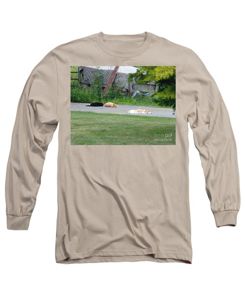 What A Day Long Sleeve T-Shirt by Donald C Morgan