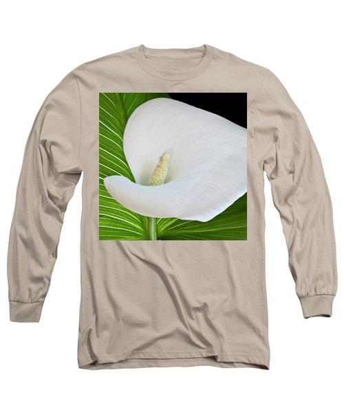 White Calla Long Sleeve T-Shirt