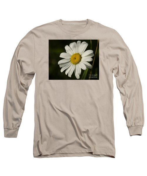 Long Sleeve T-Shirt featuring the photograph White Daisy Flower by JT Lewis