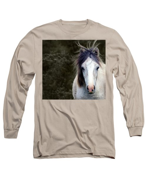 White Horse Long Sleeve T-Shirt by Sebastian Mathews Szewczyk