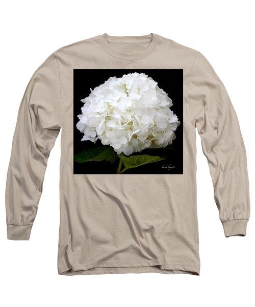 White Hydrangea Long Sleeve T-Shirt by Kume Bryant