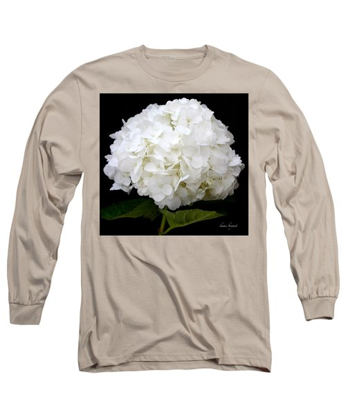 White Hydrangea Long Sleeve T-Shirt
