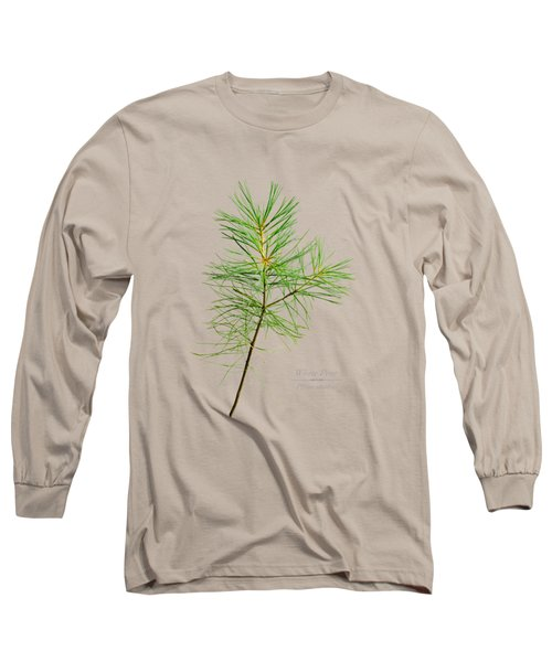 Long Sleeve T-Shirt featuring the mixed media White Pine by Christina Rollo