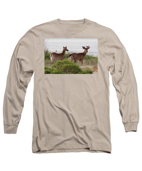 White Tail Deer Port Jefferson New York Long Sleeve T-Shirt