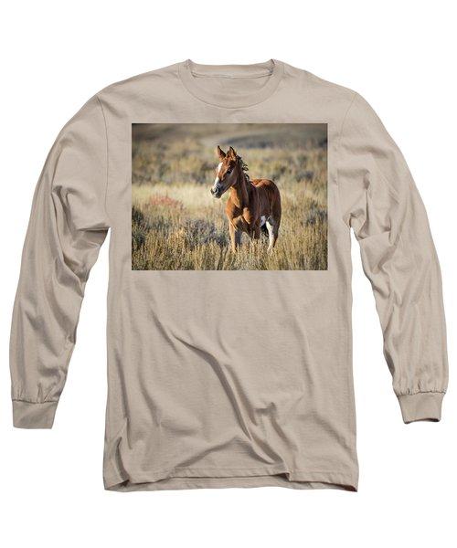 Wild Colt In Sand Wash Basin - Northwest Colorado Long Sleeve T-Shirt