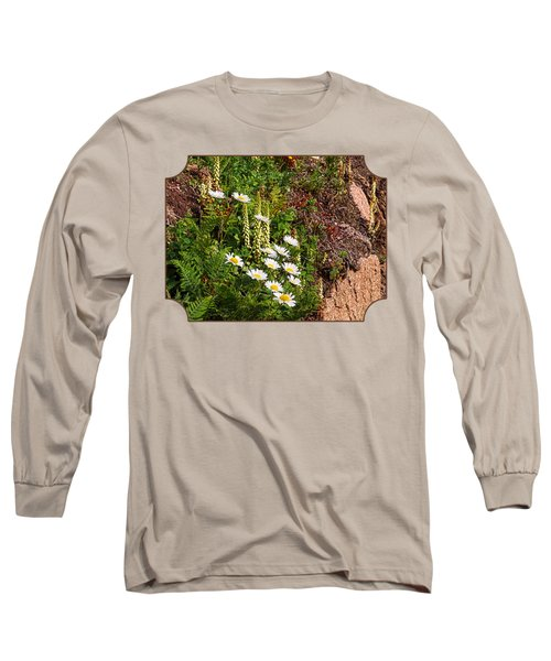 Wild Daisies In The Rocks Long Sleeve T-Shirt by Gill Billington