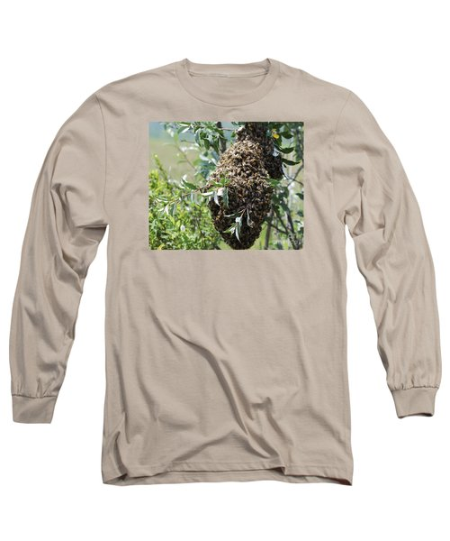 Wild Honey Bees Long Sleeve T-Shirt by Randy Bodkins