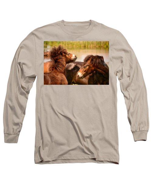Wild Horses 5 Long Sleeve T-Shirt