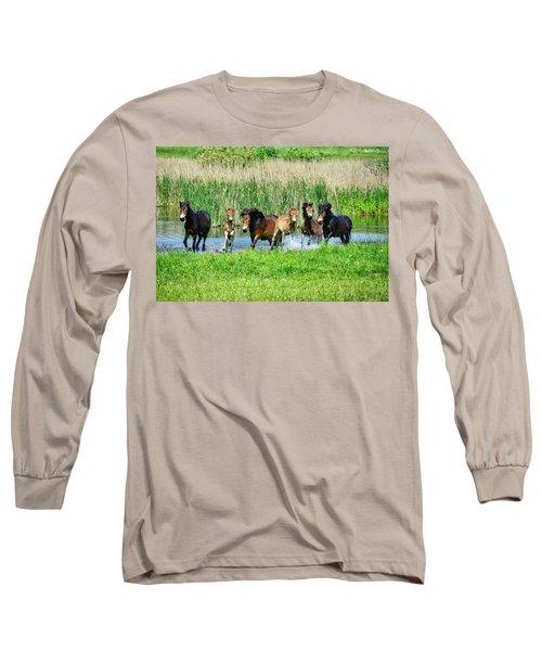 Wild Horses 6 Long Sleeve T-Shirt