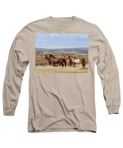 Wild Mustang Family Band In Sand Wash Basin Long Sleeve T-Shirt