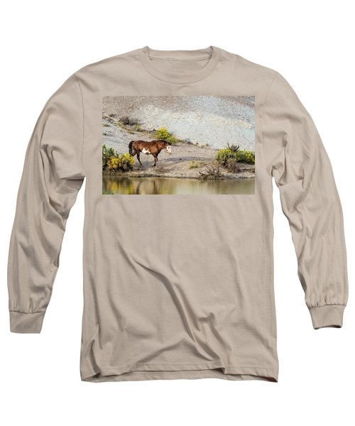 Wild Stallion Of Sand Wash Basin, Raindance Long Sleeve T-Shirt