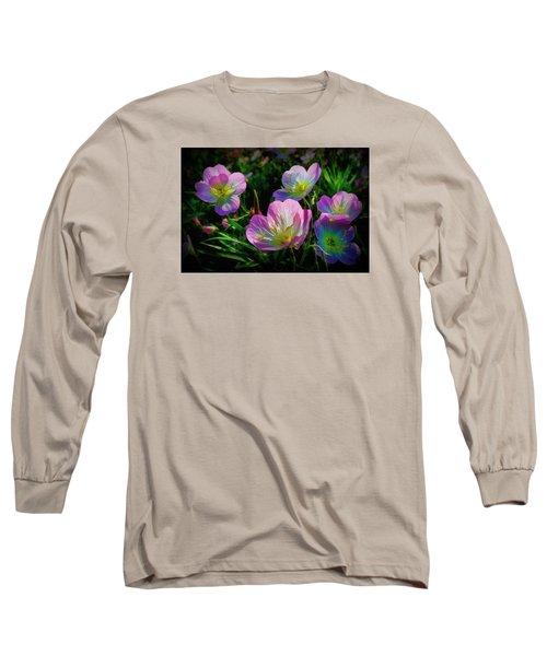 Wind Dancers Long Sleeve T-Shirt by Ernie Echols