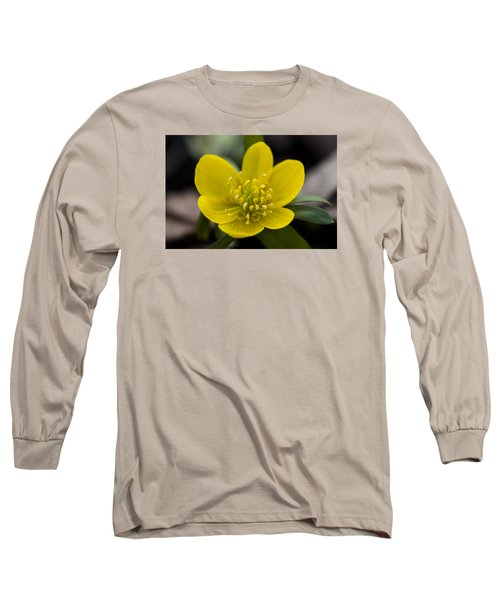 Winter Aconite Long Sleeve T-Shirt