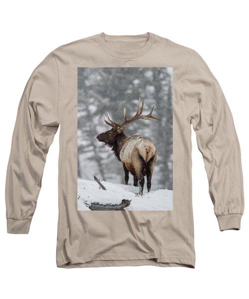 Winter Bull Elk Long Sleeve T-Shirt