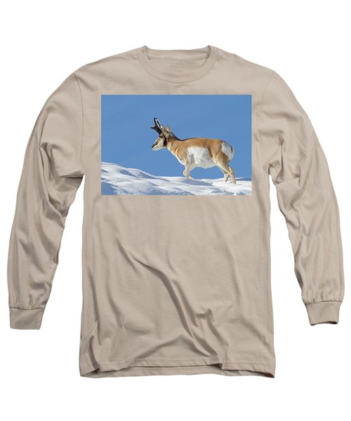 Winter Pronghorn Buck Long Sleeve T-Shirt