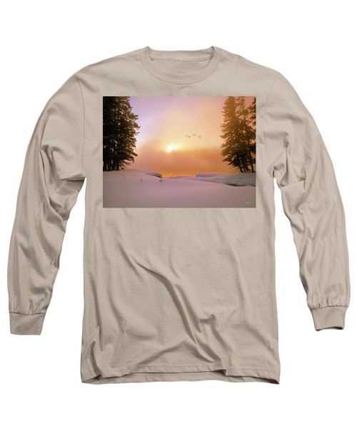 Winter Swans Long Sleeve T-Shirt by Leland D Howard