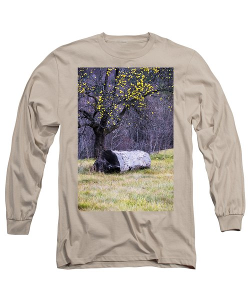 Yellow Apples Long Sleeve T-Shirt