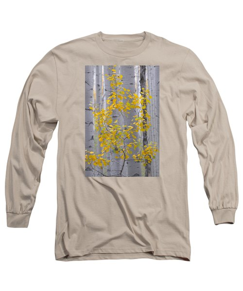 Yellow Aspen Tree Long Sleeve T-Shirt
