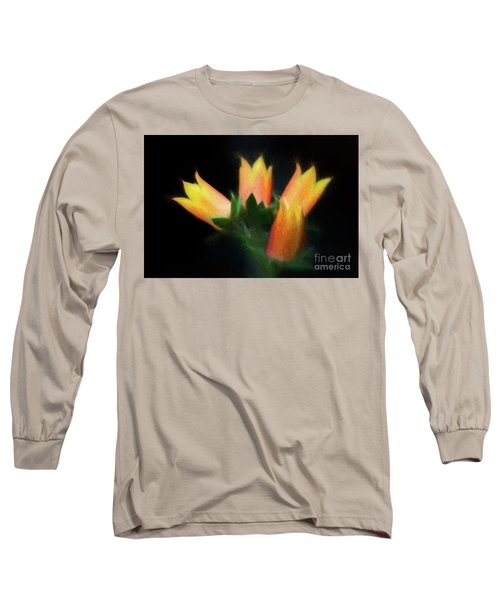 Yellow Cactus Flowers Long Sleeve T-Shirt by Darleen Stry