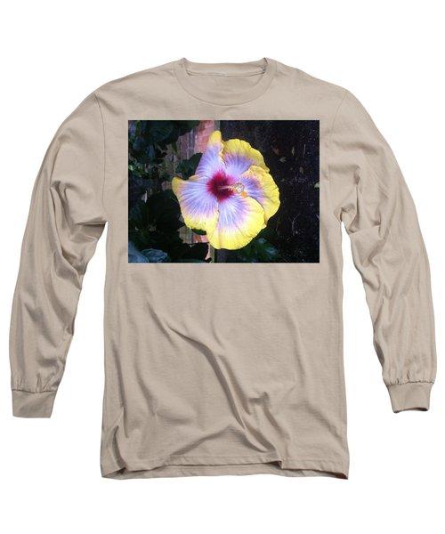 Yellow Delight Long Sleeve T-Shirt