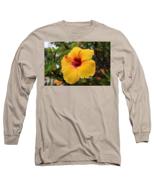 Yellow Hibiscus Long Sleeve T-Shirt