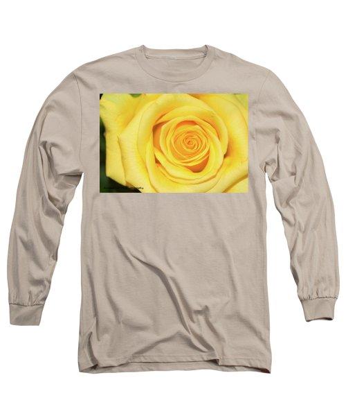 Yellow Rose Long Sleeve T-Shirt by Nance Larson