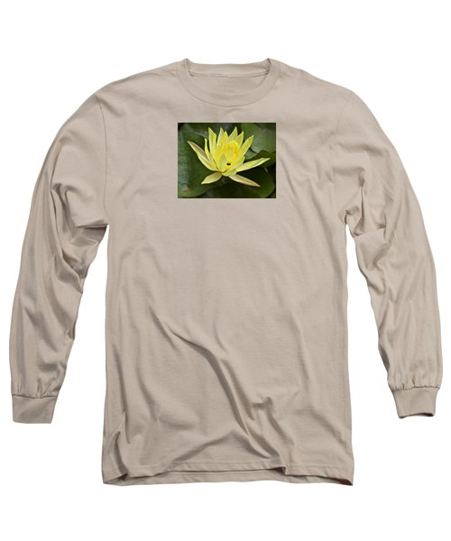 Yellow Waterlily With A Visiting Insect Long Sleeve T-Shirt