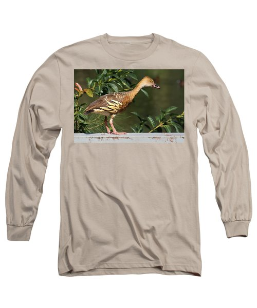 Young Duck Long Sleeve T-Shirt